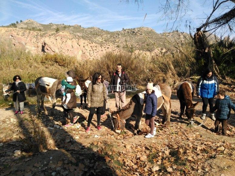 Ruta guiada con burros