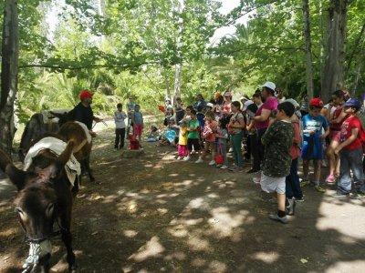 Visita guiada etnográfica con burros para colegios