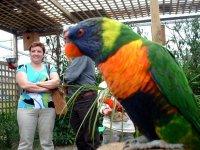 Visitando los papagayos
