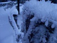 Detalle nevado