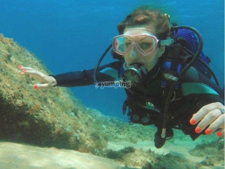 在罗列特海岸潜水