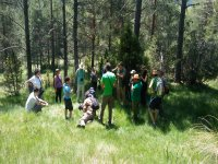 4h Spring-Mycological Route, Cuenca, Groups