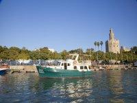 Tourist Boat Trip Guadalquivir river 60 m