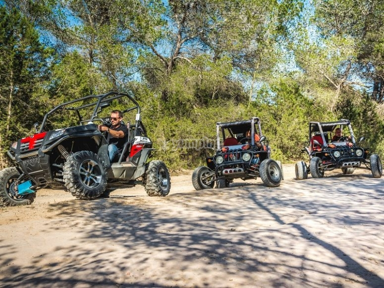 Group of buggies in Ibiza