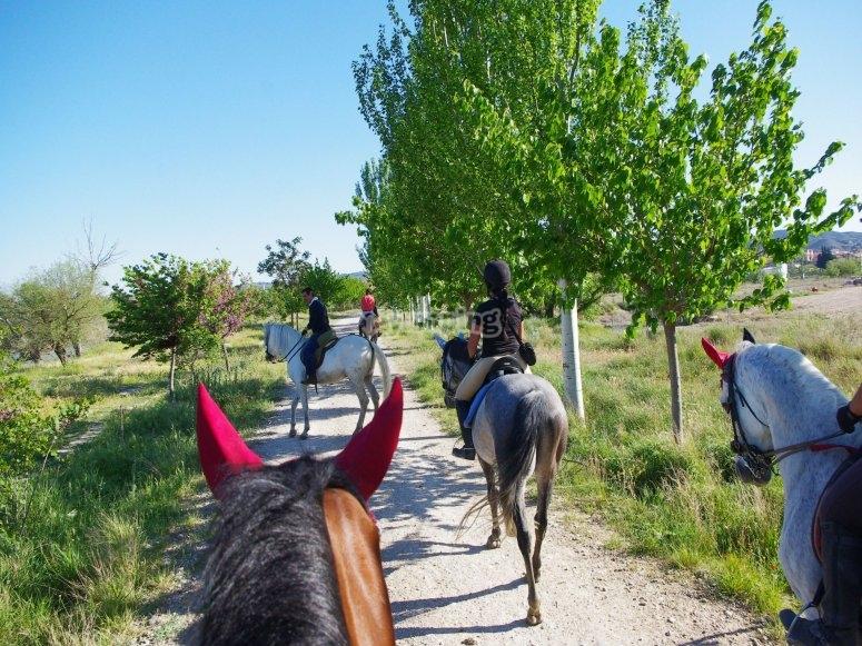 Galopando por caminos naturales de Zaragoza