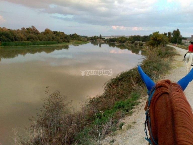 Atardeceres en el Ebro