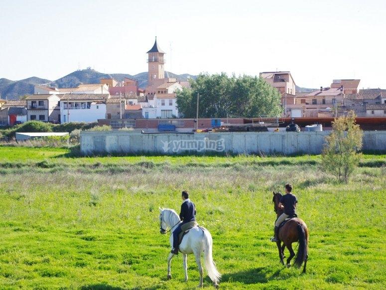 Ruta a caballo por los alrededores de Burgo de Ebro