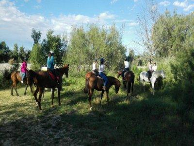Paseo a caballo por Zaragoza 1 hora