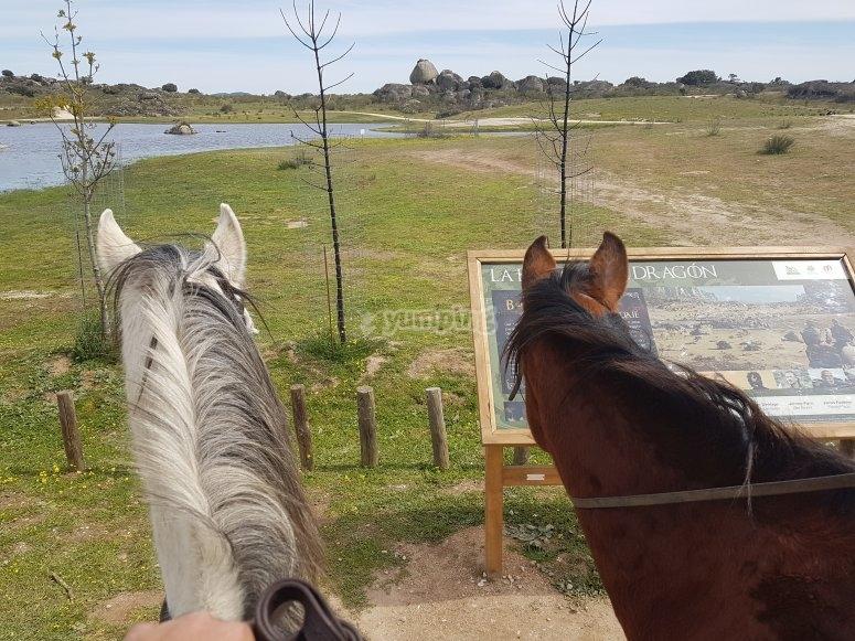 Monta a caballo en Los Barruecos