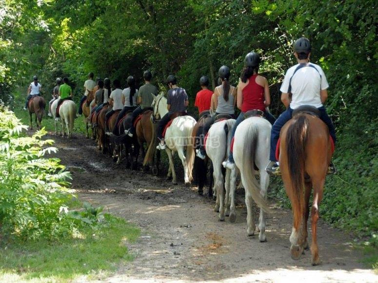 骑马在Lleida