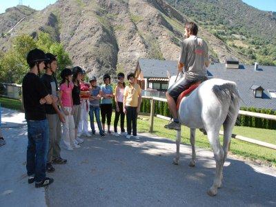在Lleida骑马游览45分钟的白菜