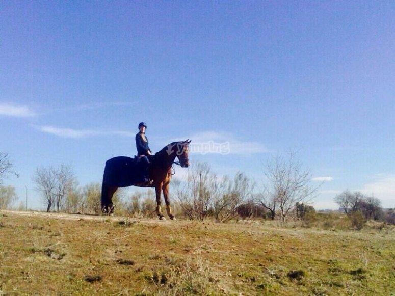 Excursion a caballo en El Pardo