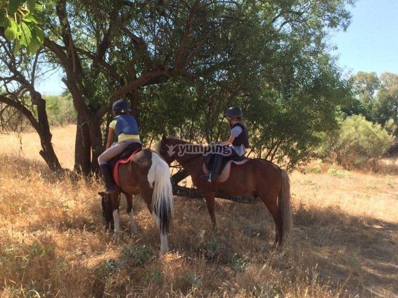 Ruta a caballo en Madrid El Pardo