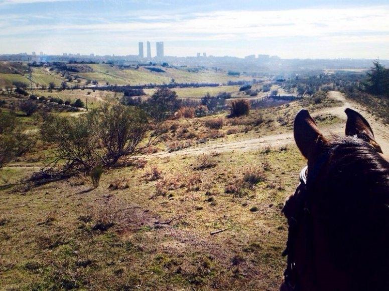 Vistas del skyline de Madrid desde el caballo
