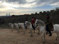 Ruta a caballo en Monte de El Pardo Madrid 1 hora