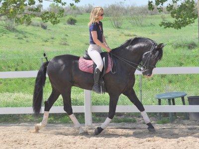 Clase de equitación en Monte de El Pardo 1 hora