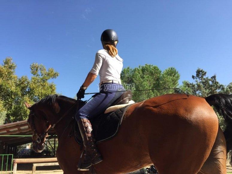 Aprender a montar a caballo en Madrid
