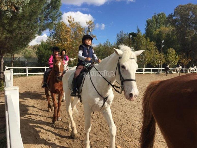 Dar clases de equitacion en Madrid