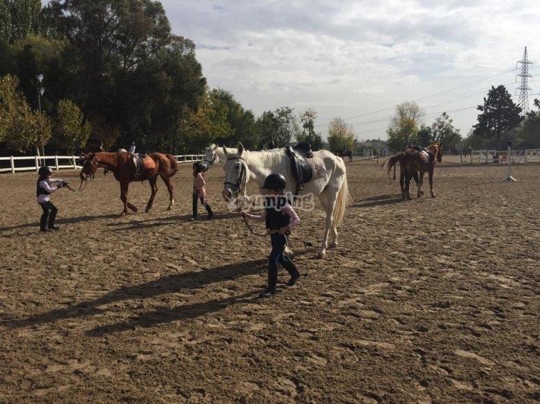 Pista de equitacion en El Pardo