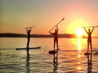 Have you tried paddle surfing?