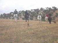 Recorriendo la montana a caballo
