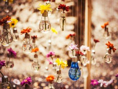 参观赫罗纳的Temps de Flors 90分钟