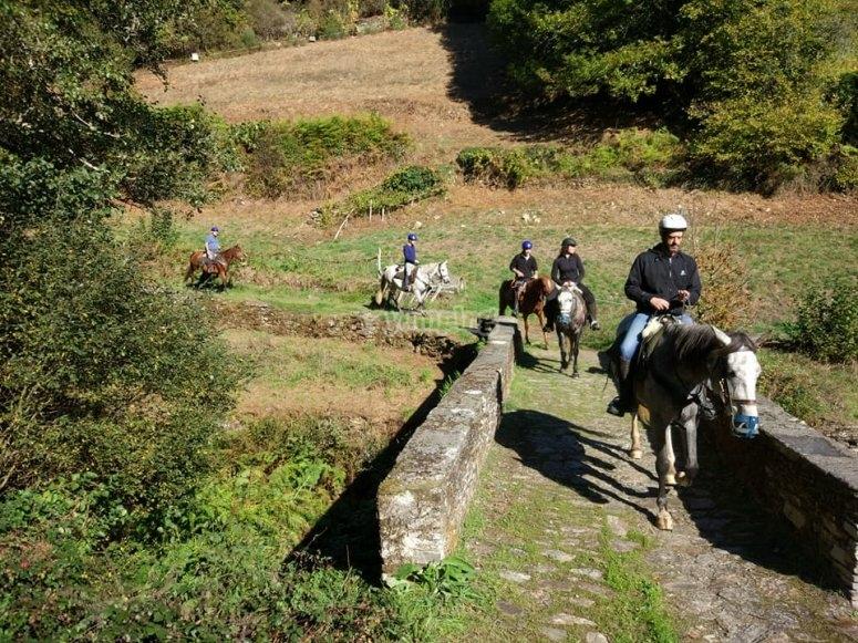 Cruzando el puente a caballo en Fonsagrada