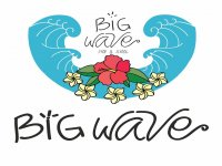 Big Wave Surf School & Surfcamp Alquiler de Bicicletas