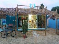 Alquila bicicletas en El Palmar