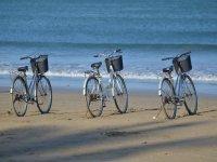 Disfruta en la playa con la bici