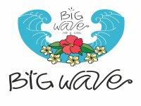 Big Wave Surf School & Surfcamp