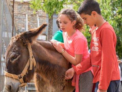 营地英语学校农场Llíria7天