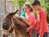 Camp in English farm school Llíria 7 days