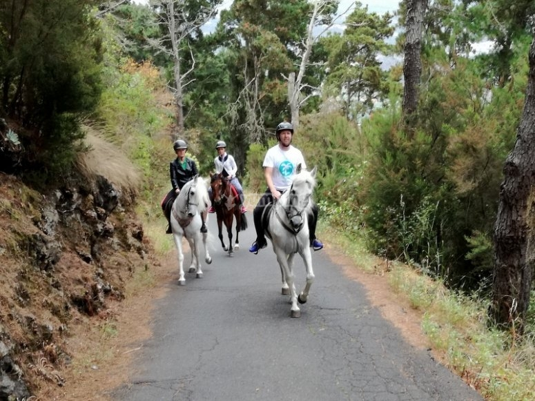 Canarias´ residents riding a horse