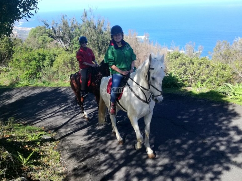 An experience by horse in Tenerife