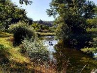 Godendo la natura del fiume in canoa