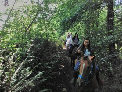 Ruta a caballo Camino Real de Asturias 1 hora