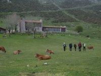 Paseo por los campos asturianos