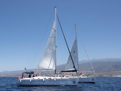 Excursión en barco exclusivo Sur de Tenerife 3h