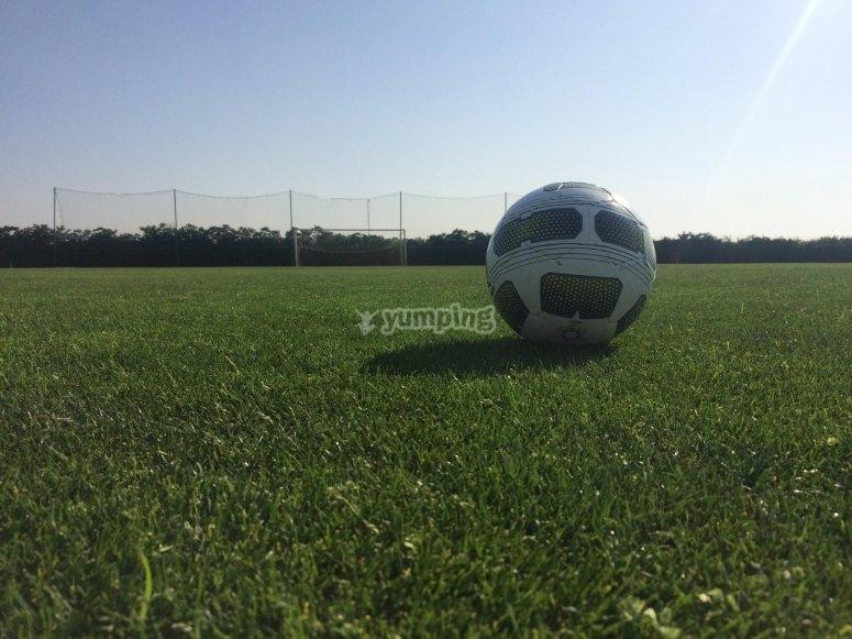 Campo de fútbol en óptimas condiciones