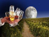 持有的酒杯agostado.jpg蒙太奇和月亮和fondo.jpg的