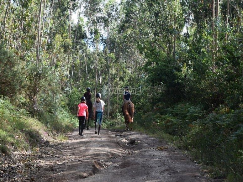 Por el camino de Negreira a caballo
