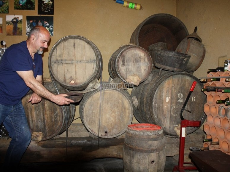 Visit to the traditional winery of Asturias