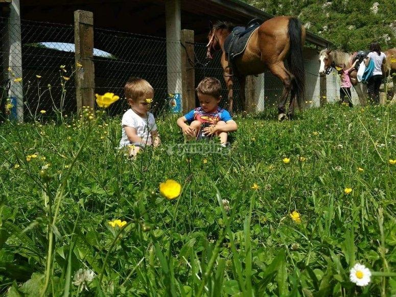 Peques en la hierba de la hipica de Itziar
