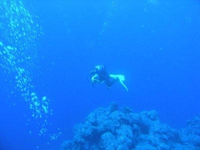 Diving Baptism in Denia