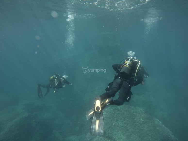 Immersioni nel mare