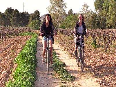 Noleggio biciclette e visita a Masia e Bodega Ludens 4h