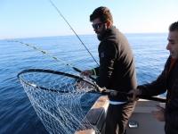 Con las redes de pesca