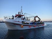 Touristic day of fishing in Torrevieja 3 hours