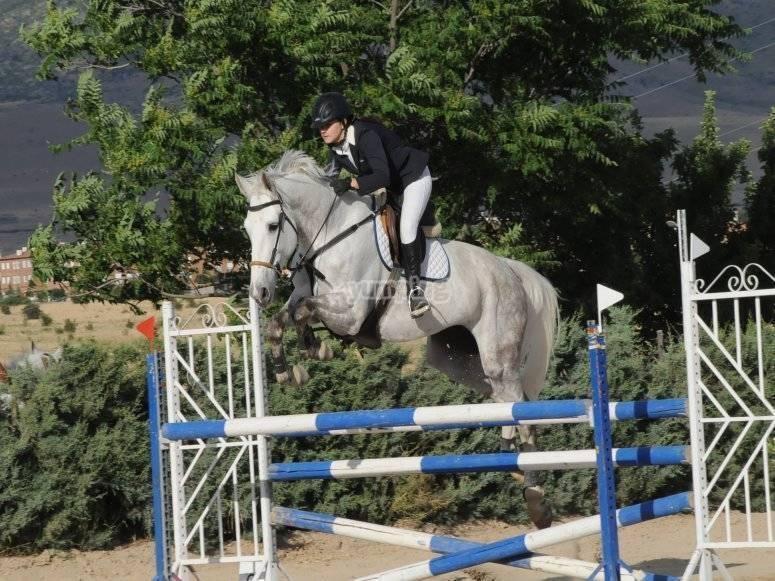 Equitación con salto